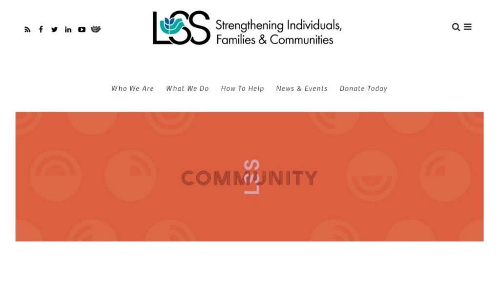 screenshot of LSS New Americans web page
